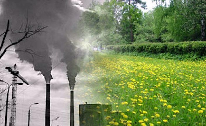 Экологическая обстановка в Нижегородском регионе признана неблагоприятной